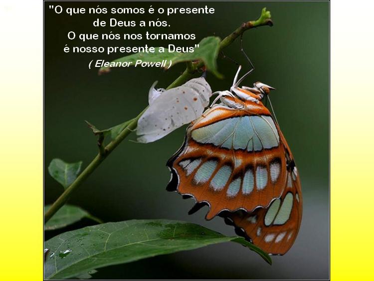 borboleta 12 eleanor powell image by FlaviusVersadus